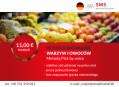 Komisjoner (k/m) bez znajomości j. niemieckiego – praca blisko granicy